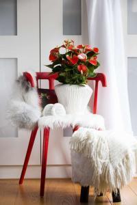 Foto: GPP. - Die Coolness der glänzenden Blüten und Blätter der Anthurie'Adios Red' wird mit weichen Materialien, wie Plüsch, Wolle oder fließenden Stoffe, gebrochen.