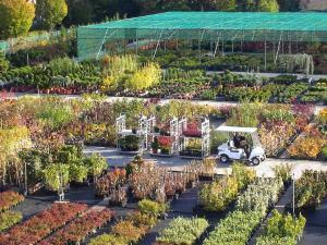 Foto: BdB. - Der Frühling ist eine klassische Pflanzzeit. Wer jetzt neue Pflanzen aussucht, kann das Ergebnis schon in dieser Gartensaison genießen.