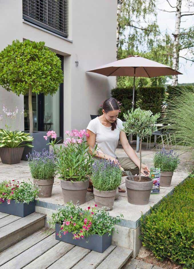 pflanzen lieben schafwolle jetzt auf immobilien und hausbau. Black Bedroom Furniture Sets. Home Design Ideas