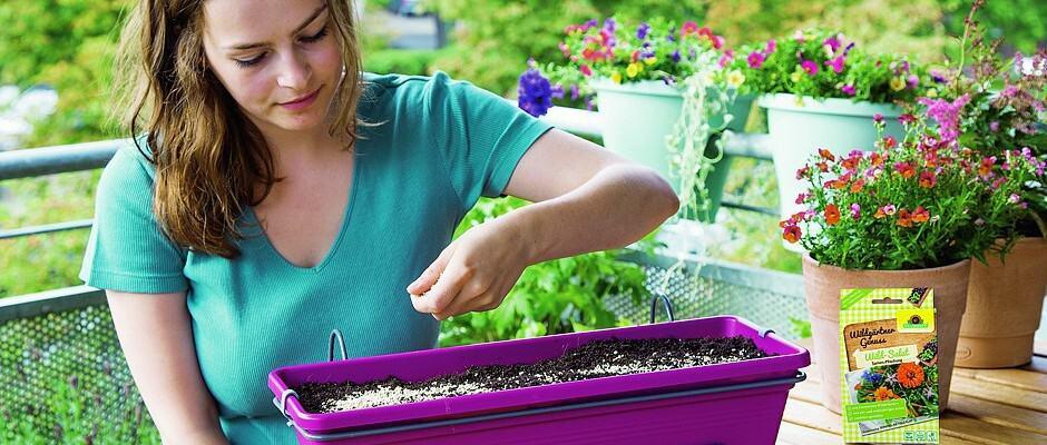 txn-p. Wer keinen Garten hat, muss trotzdem nicht auf selbstgezogene, erntefrische Kräuter in der Küche verzichten. Es gibt spezielle Samen-Mischungen, die eine spannende Auswahl an Kräutern und essbaren Pflanzen enthalten und leicht angebaut werden können. Foto: Neudorff/txn