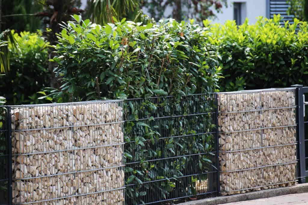 Alternative Gartenbegrenzungen mit Gabionen