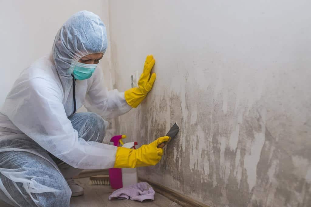 Beseitigung der feuchten Wänden