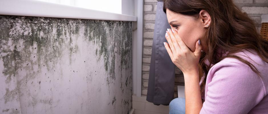 Feuchtigkeit in Wänden erkennen